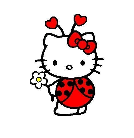 Hello kitty coccinelle :)